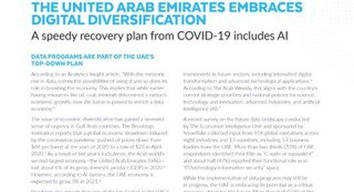 Data's Evolution in the Cloud: The United Arab Emirates Embraces Digital Diversification