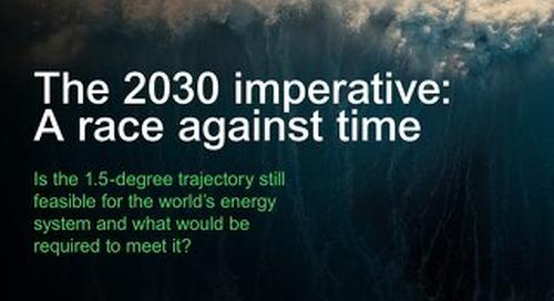 Download: 2030 Scenario White Paper