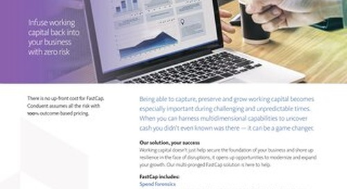 FastCap™ Analytics, Audit and Recovery Solutions