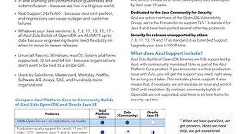 DS-Azul Platform Core: Why Java Support?