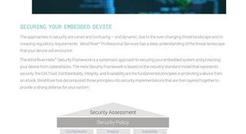 Professional Services Security Assessment Datasheet
