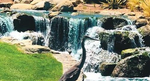 Sun Lakes Lifestyles September 2021