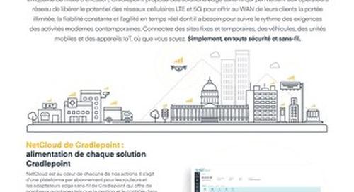 Network Operators Solution Brief - French (EU)