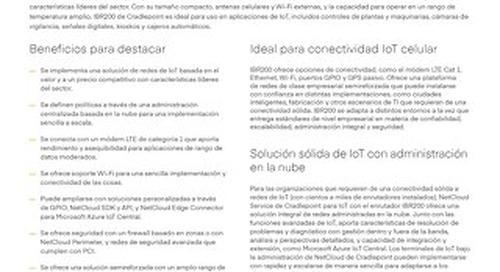 IBR 200 Data Sheet – Spanish (LA)