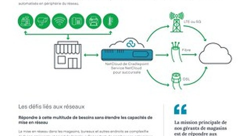Hybrid WAN: Using LTE, 5G, and SD-WAN Technologies in One Solution – French (EU)