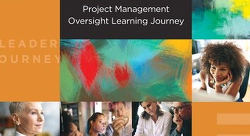 Project Management Oversight Learning Journey