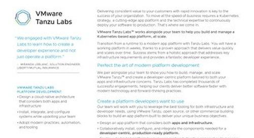 VMware Tanzu Labs  Platform Development