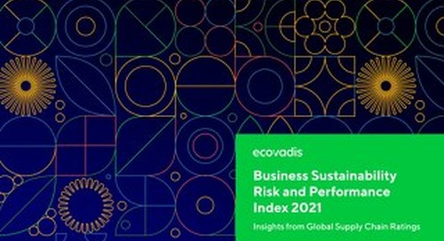 Business Sustainability Risk and Performance Index 2021