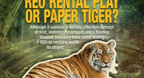 REO Rental Play or Paper Tiger?