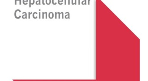 Hepatocellular Carcinoma (AASLD Bundle)