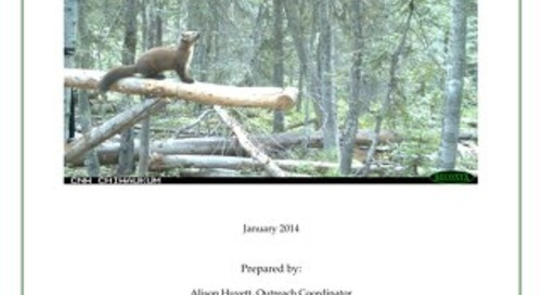 2013 Spring-Fall Field Season Report CWMP