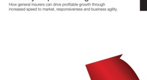 The Nimble Product Factory: The Key to Profitable Growth - White Paper
