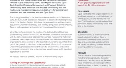 Case Study: Opus Bank Teams with Equifax to Service Small Businesses
