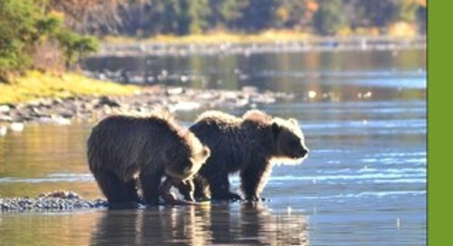 Fall 2014 Conservation Northwest Quarterly