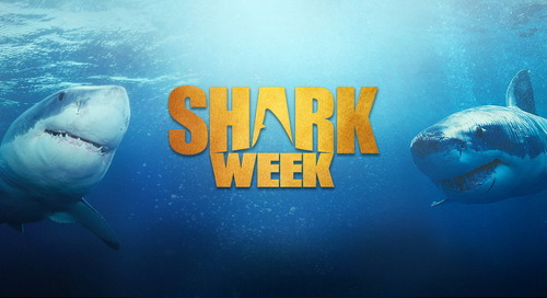 Discovery Channel: Shark Week [Returning Event]