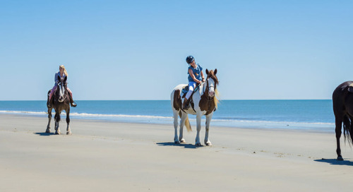 How Golden Isles CVB Attracts Tourists in Key Demographics with CrowdRiff and Simpleview