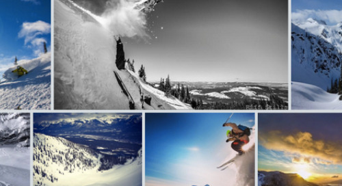 New Feature! Embeddable Photo Galleries
