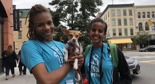 PETnI, an Online Pet Care Service