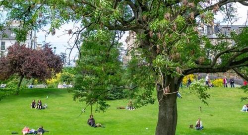5 Easy Memorial Day Weekend Activity Ideas