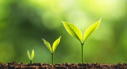 Lead Nurturing: Are you Following the 3 x 3 x 3 Rule?
