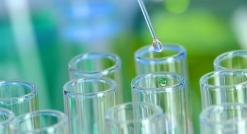 Italy's Italmatch snaps up Brazilian chemicals company