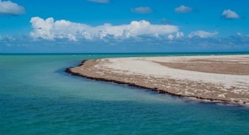 Tunisia's SONEDE details programme of desalination plants