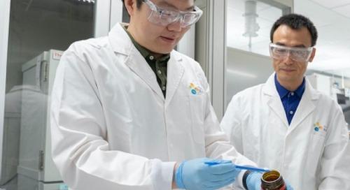 KAUST develops adsorbent hydrogel prototype