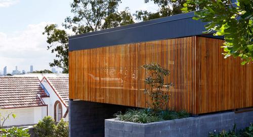 The Coorparoo House in Brisbane Designed Around the Surrounding Eucalyptus Trees