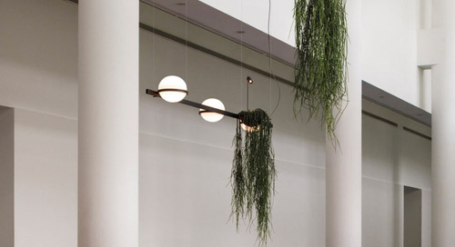 Palma Introduces Plants and Lighting to Indoor Settings