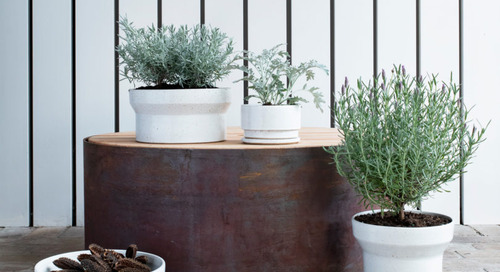 Architecturally-Inspired Planters by Anchor Ceramics