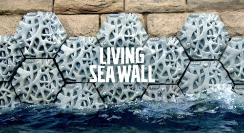 The Volvo Living Seawall Tiles Invite Shoreline Biodiversity