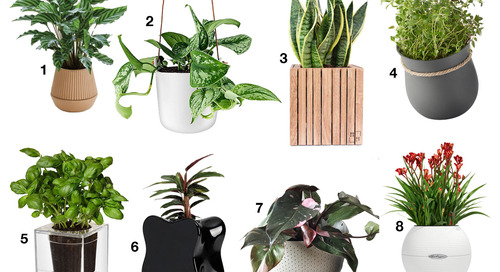 Self-Watering Planters That Will Help You Get a Green Thumb