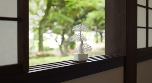 The Interactive Grid-Bonsai That Will Always Stay Alive