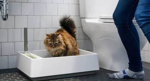 Tuft + Paw Designs a Modern Litter Box You Won't Have to Hide