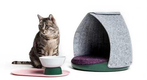 LAYER x Cat Person: Adaptable, Modern Gear for Cool Cats