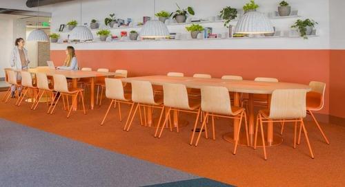 Best Practice Architecture Designs a Color Rich Office for Healthcare App