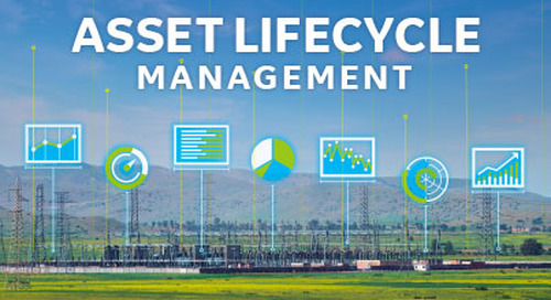 Asset Lifecycle Management Services (ALM)