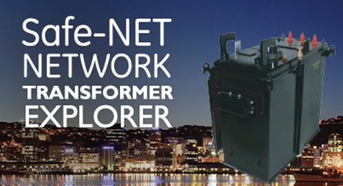 Safe-NET Network Transformers