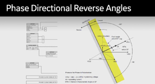 3SP-1036 - Defining Phase Directional Reverse Angles