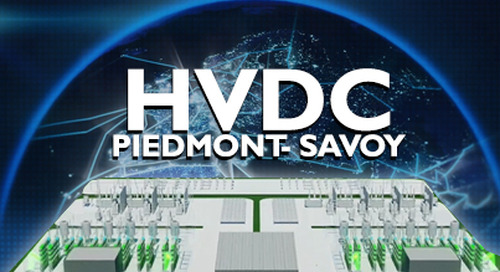 Piedmont Savoy Customer Application - english