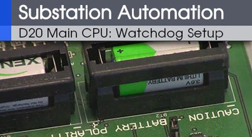 D20-1005 - D20 CPU Watchdog Setup