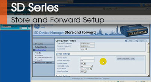 SD Series™ | Store and Forward Setup v1.1