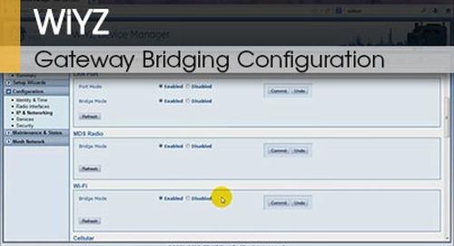 WiYZ™ | Gateway Bridging Configuration v1.1