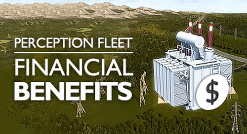 Perception Fleet - Financial Benefits