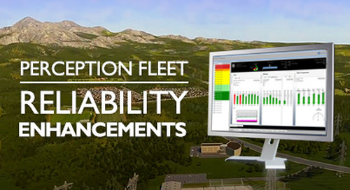 Perception Fleet - Reliability Enhancements