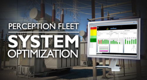 Perception Fleet - System Optimization