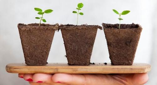 Ecovadis Raccoglie Un Investimento Di Circa 200 Milioni Di Dollari Da CVC Growth Partners Finalizzato Ad Accelerare L'adozione Di Rating Di