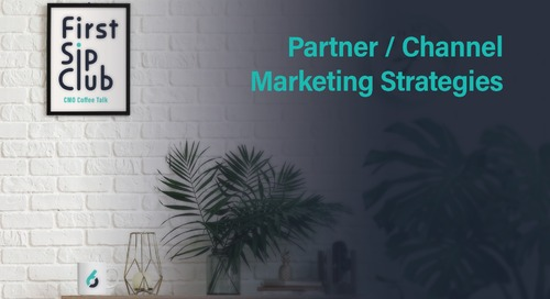 Partner / Channel Marketing Strategies - 11/20/20