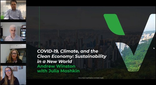 COVID-19, Climate, and the Clean Economy: Sustainability in a New World