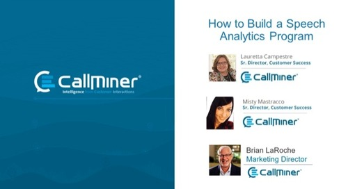 How to Build a Speech Analytics Program